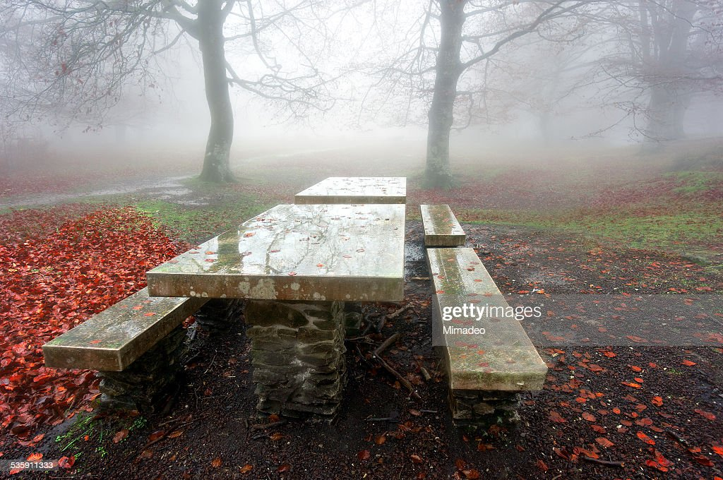 picnic table in foggy forest : Stock Photo