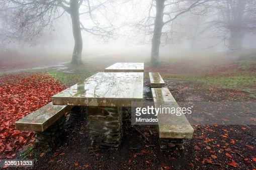 Mesa de jardín en el bosque de niebla : Foto de stock