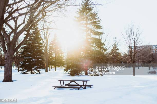 Picnic table in the snow at sunset