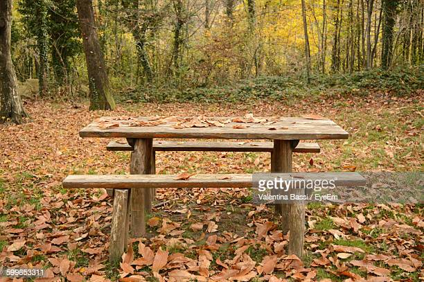 Picnic Table On Leaves Covered Field During Autumn