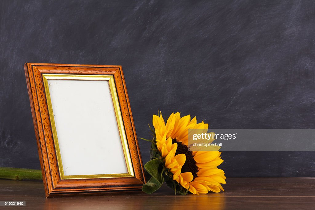 Picture frame and sunflower against a dirty blackboard backgroun : Stockfoto