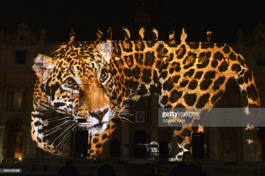 A picture is projected on St. Peters Basilica during the show Fiat Lux : Illuminating Our Common Home, on December 8, 2015 at the Vatican. Images by some of the world's greatest environmental photographers, including Sebastião Salgado, Joel Sartore, Yann Arthus-Bertrand and Louie Schwartzberg, are projected in solidarity with COP21 talks in Paris. It is also part of the inauguration of the Roman Catholic Churchs yearlong Jubilee of Mercy, which starts today. / AFP / TIZIANA