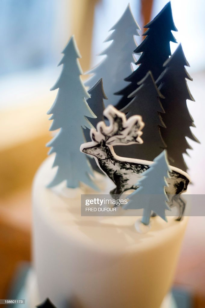 Picture of a Christmas cake taken on December 20, 2012 in Paris at the Sugarplum Cake Shop, an authentic American Coffee Shop. AFP PHOTO / FRED DUFOUR