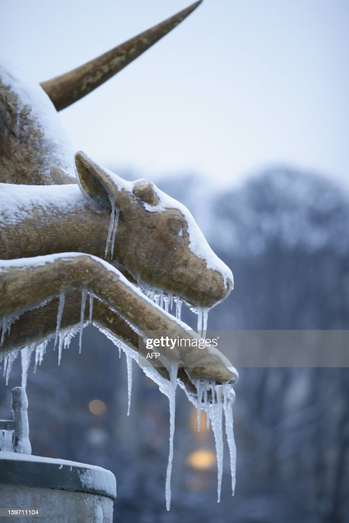Picture of a frozen sculpture taken on January 19, 2013 in Paris.