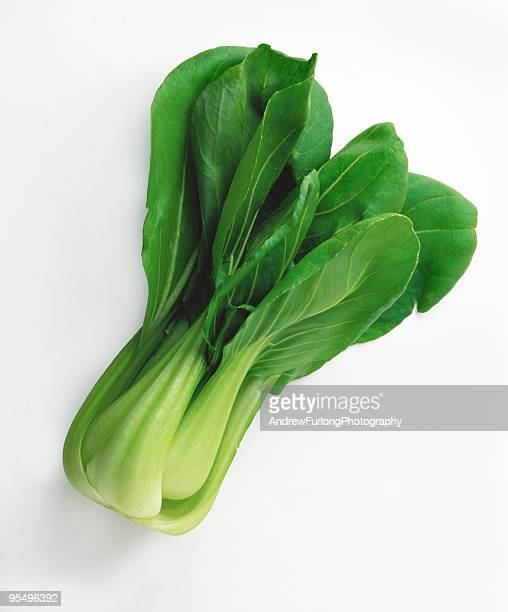 Picture of a green bok choy on a white background