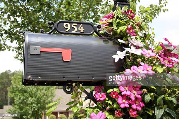 A picture of a mailbox with 954