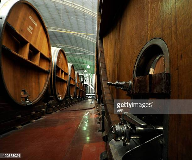 Picture of French oak barrels aging red wine at Bodegas Lopez winery in Maipu 16 km from Mendoza in the Argentine western province of the same name...