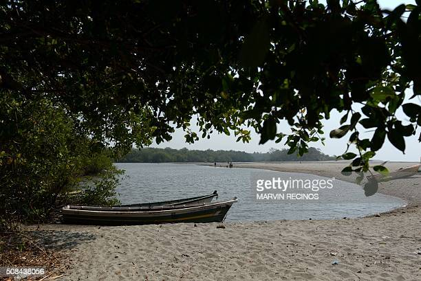 Picture of the beach at the village of San Diego in La Libertad Salvador from where Sambo fish are harvested for a mosquito control project taken on...