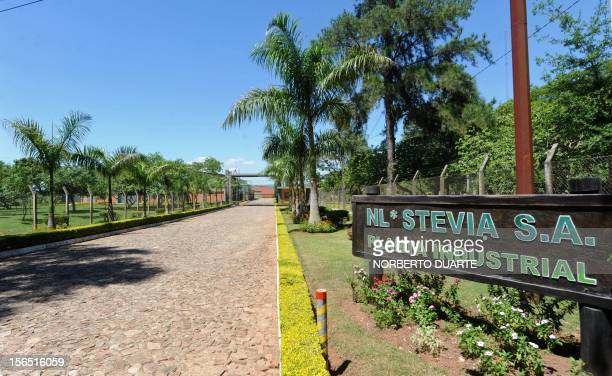 Picture of the entrance of the NL industrial plant which processes stevia Latin name stevia rebaudiana bertoni in Caacupe 50 km east of Asuncion on...