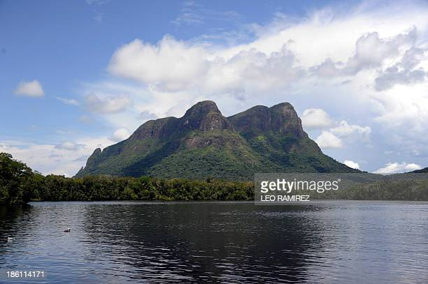 Picture of the Piaroa ethnic group's sacred mountain 'Cara de Indio' taken from one of the tributaries of the Orinoco river near Puerto Ayacucho in...