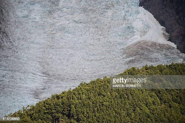 Picture of the Serrano Glacier located in the Bernardo OHiggins National Park in the Chilean Patagonia about 1960 km south of Santiago taken on...