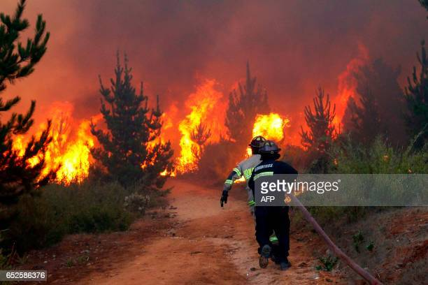 Picture released on March 12 2017 by Aton Chile shows firefighters working to put out a forest fire in Valparaiso Chilean authorities decreed red...