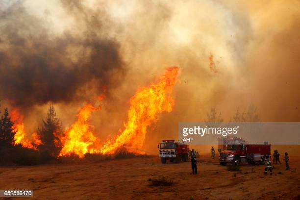 TOPSHOT Picture released on March 12 2017 by Aton Chile shows firefighters working to put out a forest fire in Valparaiso Chilean authorities decreed...