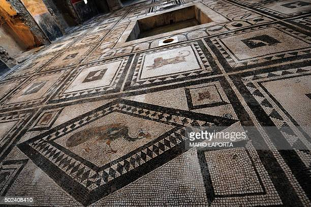 A picture shows a floor covered with mosaics in the Pacuius Proculus Domus one of six restored domus at UN World Heritage Site Pompeii on December 24...