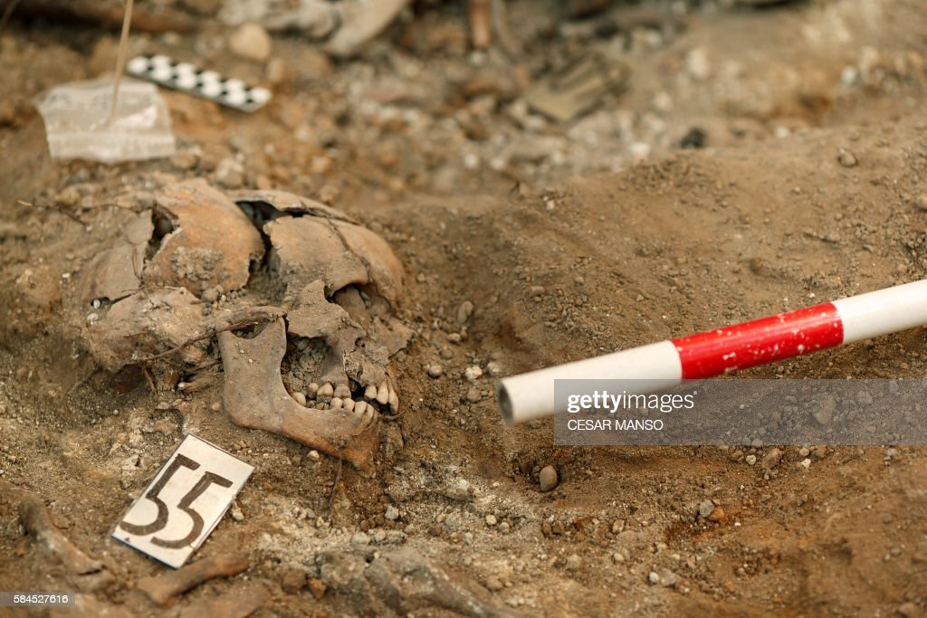 Picture shows human remains discovered during exhumation works done by the Association for the Recovery of Historical Memory of Valladolid in a mass...