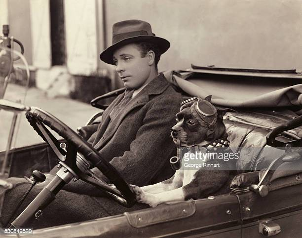 Picture shows 'Jigs' dog of the movies driving an unidentified man in a convertible