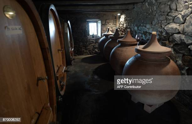 A picture shows oak barrels and 'dolia' earthenware jars used to age wine on October 12 in the wine cellar of the Riouspeyrous winemakers in...
