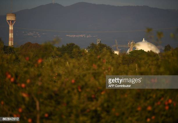 A picture shows orange trees near the Garigliano Nuclear Power Plant located at the outskirts of Sessa Aurunca 160km southern Rome on October 16 2017...