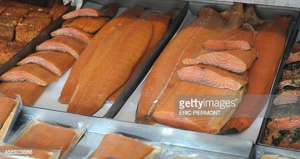 Picture shows salmon and other fishes at the Fish Market near the Norwegian harbor of Bergen on September 12 2014 in Bergen AFP PHOTO ERIC PIERMONT