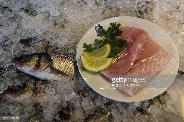 A picture shows seabass displayed in a restaurant in Cairo on October 23 2014 AFP PHOTO/ KHALED DESOUKI