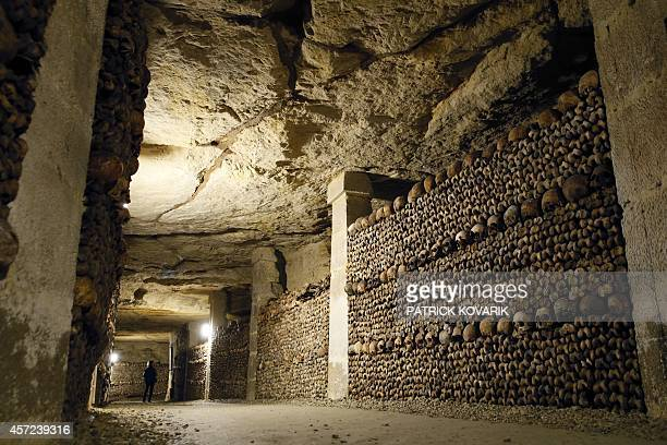 A picture shows skulls and bones stacked at the Catacombs of Paris on October 14 2014 These underground quarries were used to store the remains of...