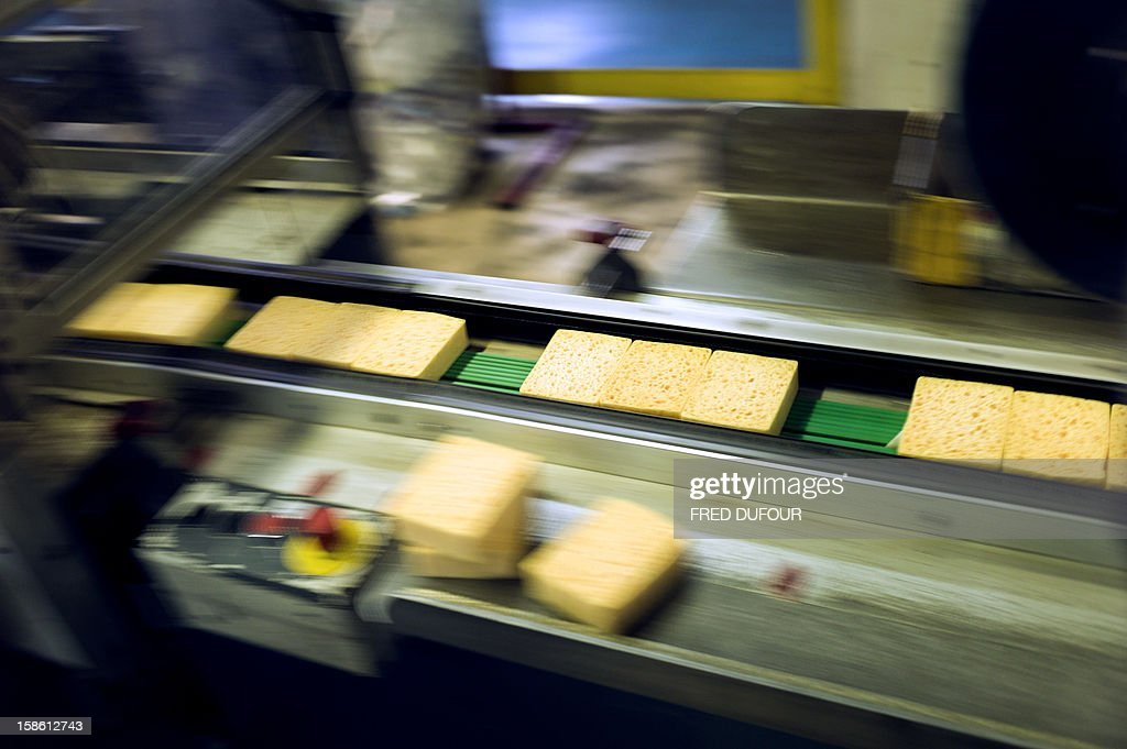 Picture shows sponges at the factory of French sponge brand Spontex on December 19, 2012 in Beauvais.