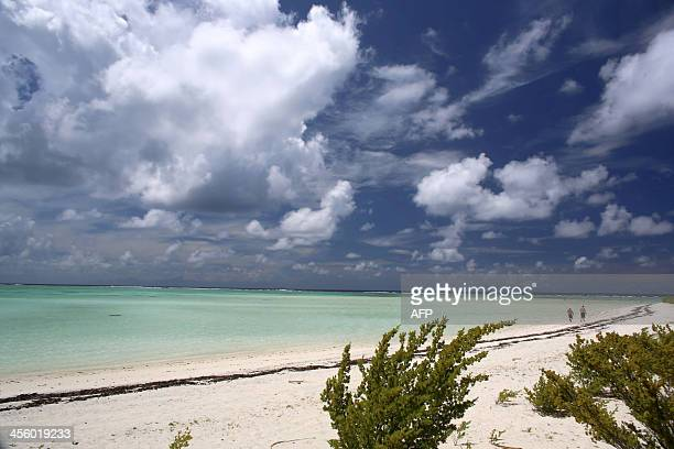 A picture shows the beach near The Brando an ecofriendly resort on the private island of Tetiaroa on December 10 2013 After two years of construction...
