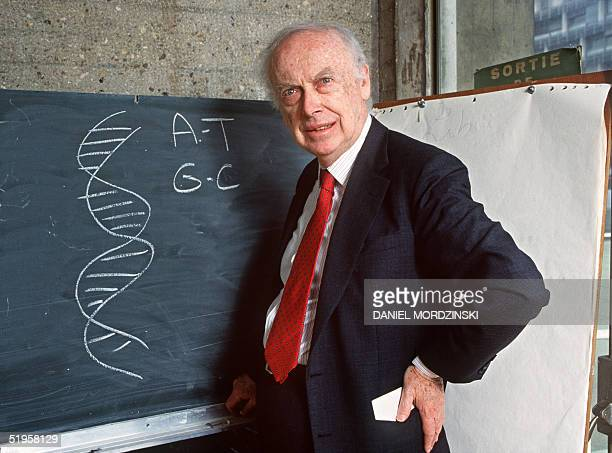 Picture taken 23 April 1993 in Paris of American geneticist James Dewey Watson in front of a blackboard explaining his work to discover the molecular...