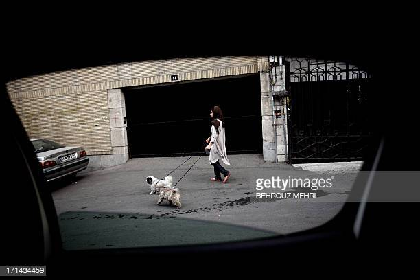 A picture taken from inside a car shows an Iranian woman walking her dogs in the rich Elahiyeh district in northern Tehran on June 24 2013 For...