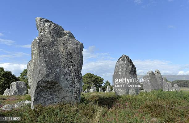 A picture taken on August 22 2014 shows stones part of the megalithic sites of Carnac in the Morbihan gulf western France Around Carnac are found...
