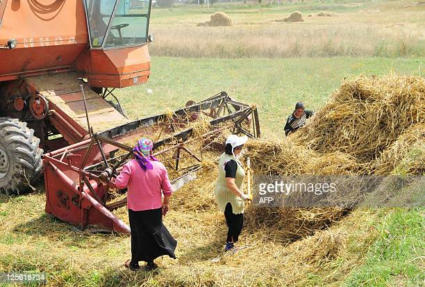 A picture taken on August 24 shows women work in the fields near the Armenian village of Vardadzor around 130 kilometres from the exSoviet state's...