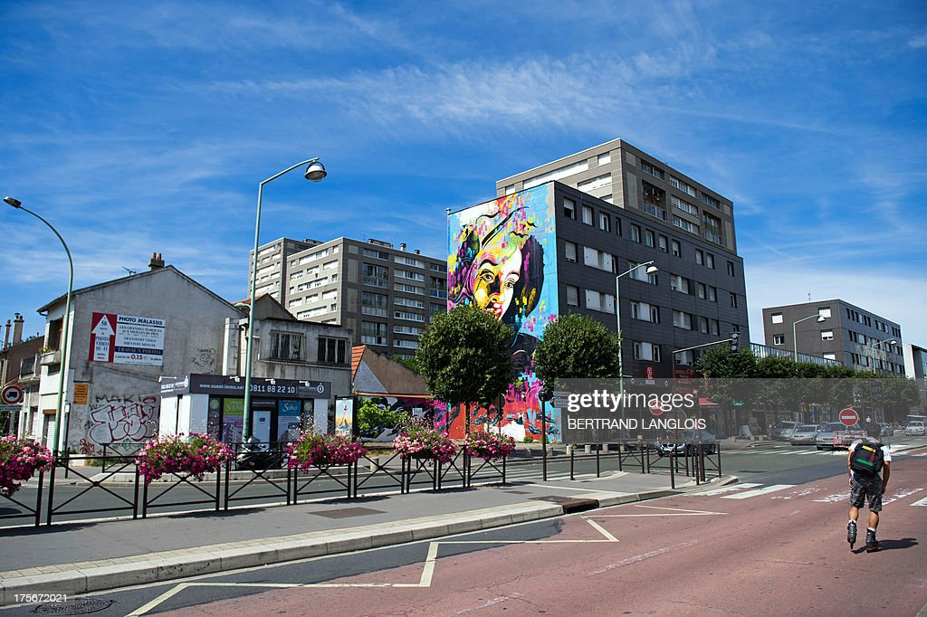 A picture taken on August 4, 2013 in Vitry-sur-Seine, outside Paris, shows an artwork by French street artist C215, moniker of Christian Guemy. Vitry-sur-Seine, a suburban residential town of concrete, has become in recent years one of the world's street art capitals, showcasing artists and must-see venues for this contemporary art movement which has turned its streets into an open-air gallery.