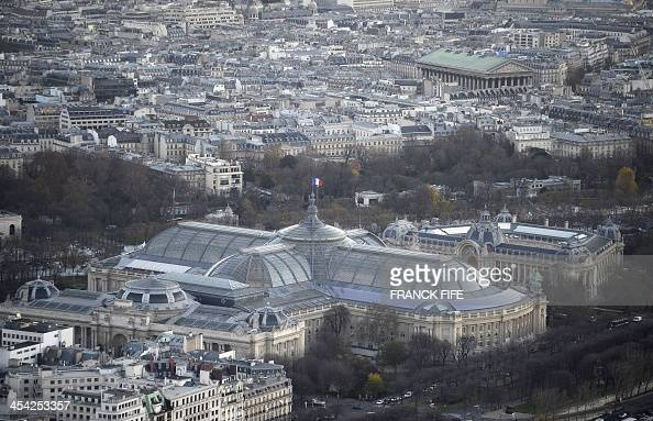 A picture taken on December 6 2013 shows the Grand Palais the Petit Palais and buildings in Paris AFP PHOTO / FRANCK FIFE