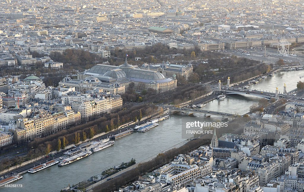 A picture taken on December 6, 2013 shows the river Seine, the Grand Palais (C), the Petit Palais (C, right), the Alexandre III bridge (R) and buildings in Paris .