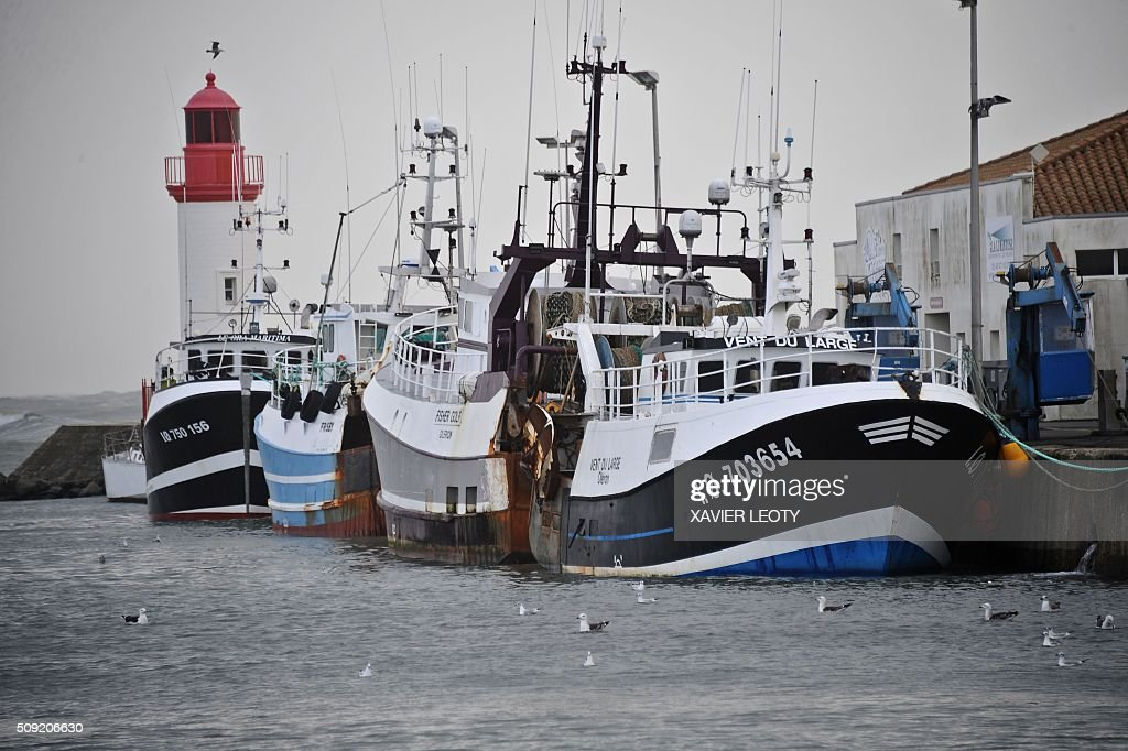 A picture taken on February 8, 2016 shows trawlers docked in the La Cotiniere fishing harbour, Saint-Pierre d'Oleron, southwestern France. / AFP / XAVIER LEOTY