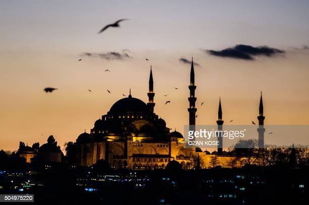 TOPSHOT A picture taken on January 14 2016 shows seagulls flying over Suleymaniye mosque in Istanbul Turkey said on January 13 it had arrested a...