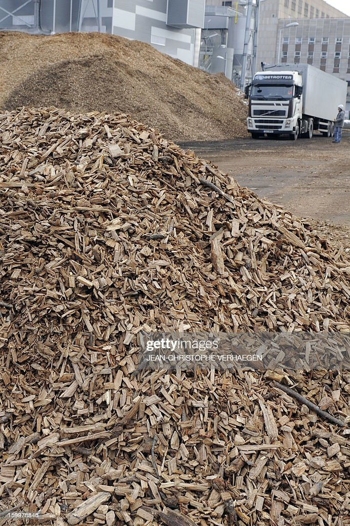 A picture taken on January 24, 2013 shows fuel composed of wood chips stored for the UEM (Usine d'Electricité de Metz) biomass plant (background) in Metz, eastern France, on January 24, 2013. This thermal power plant, coal-fired, gas and biomass, provides electricity and heat to Metz and to the surrounding towns. AFP PHOTO / JEAN-CHRISTOPHE VERHAEGEN