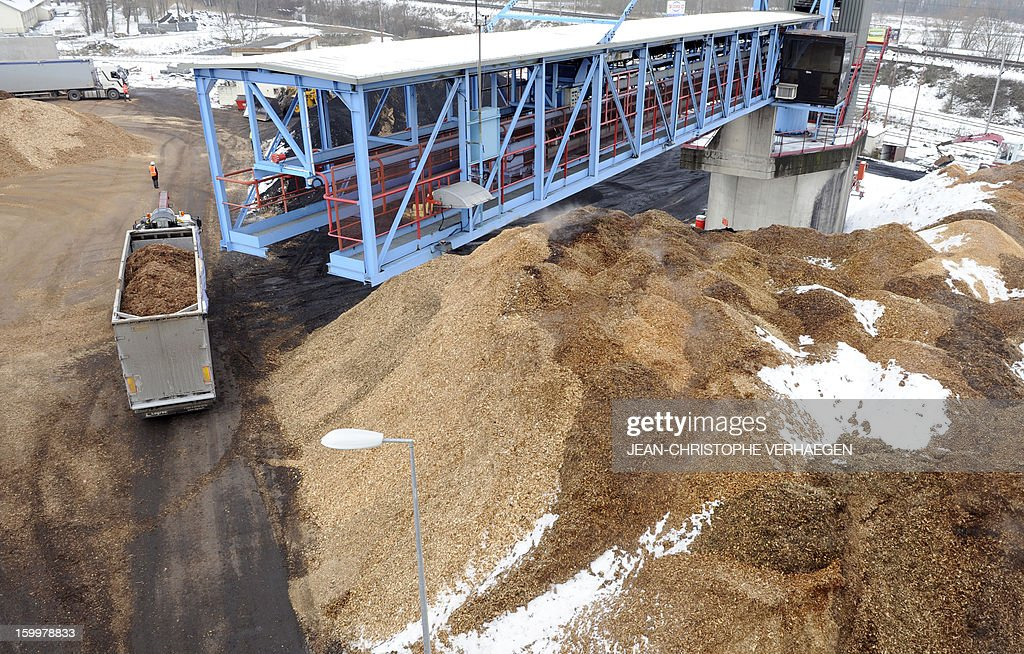 A picture taken on January 24, 2013 shows the storage of fuel composed of wood chips to be used for the UEM (Usine d'Electricité de Metz) biomass plant in Metz, eastern France. This thermal power plant, coal-fired, gas and biomass, provides electricity and heat to Metz and to the surrounding towns.