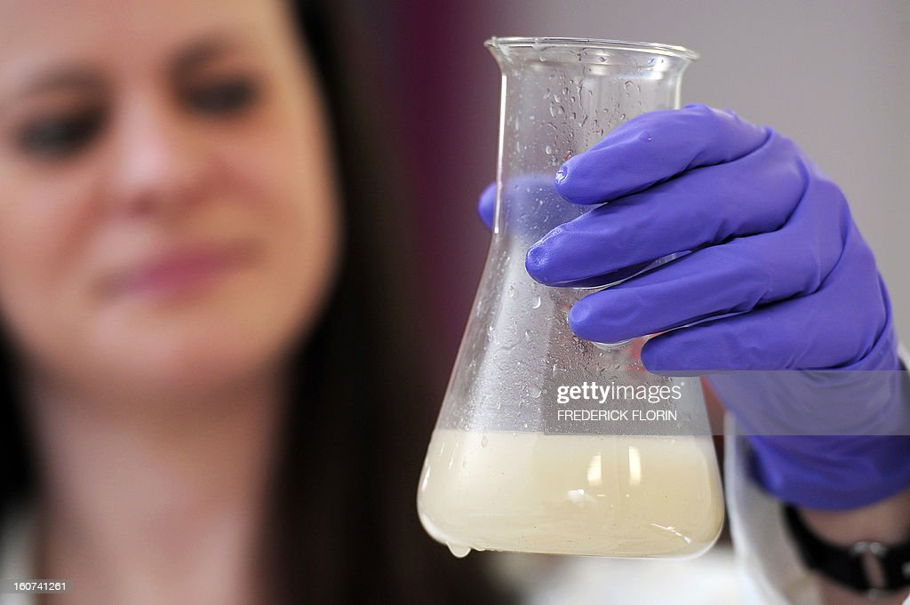 A picture taken on January 31, 2013 in Meistratzheim, near in Krautergersheim, eastern France, shows shows a technician analyzing some sauerkraut juice. In Krautergersheim, the self-proclaimed sauerkraut capital, polluting sauerkraut juice obtained after fermenting cabbage, is transformed into heat and electricity at a waste-water treatment plant through anaerobic digestion, a bacterial process that produces methane, which can be used in generators for electricity production and/or in boilers for heating purposes.