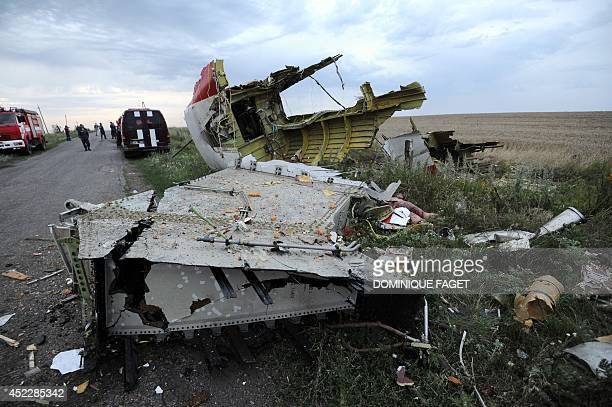 A picture taken on July 17 2014 shows the wreckages of the malaysian airliner carrying 295 people from Amsterdam to Kuala Lumpur after it crashed...