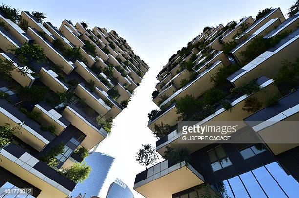 A picture taken on July 24 2015 shows a view of the Bosco Verticale towers in the Porta Nuova area in Milan AFP PHOTO / GIUSEPPE CACACE