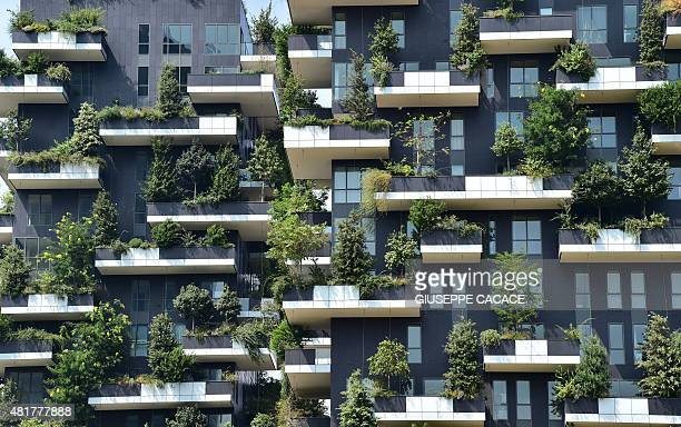 A picture taken on July 24 2015 shows closeup view of the Bosco Verticale towers in the Porta Nuova area in Milan AFP PHOTO / GIUSEPPE CACACE