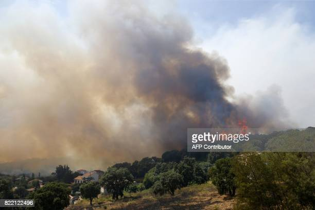 A picture taken on July 25 2017 shows a fire burning a forest in Ortale de Biguglia near Biguglia on the French Mediterranean island of Corsica...