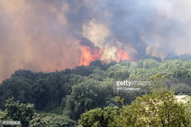 A picture taken on July 25 2017 shows a fire burning the forest in Ortale de Biguglia near Biguglia on the French Mediterranean island of Corsica...
