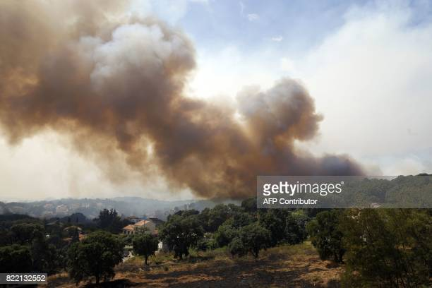 A picture taken on July 25 2017 shows smoke rising from a fire in Ortale de Biguglia near Biguglia on the French Mediterranean island of Corsica...
