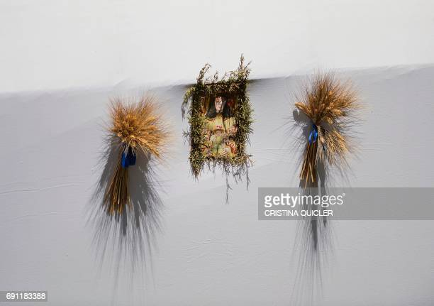A picture taken on June 1 2017 shows an image of the Virgen del Rocio displayed on a carriage near the Quema river during the annual El Rocio...