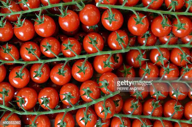A picture taken on June 13 2014 shows cherry tomatoes in a local business in Paris AFP PHOTO / PIERRE ANDRIEU