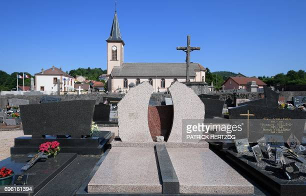 A picture taken on June 15 shows the former grave of the fouryearold Gregory Villemin in LepangessurVologne eastern France French police...