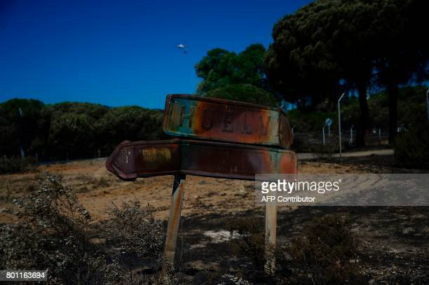 A picture taken on June 26 2017 shows a charred roadsign reading Huelva after a wildfire in Mazagon near the Donana National Park More than 1500...