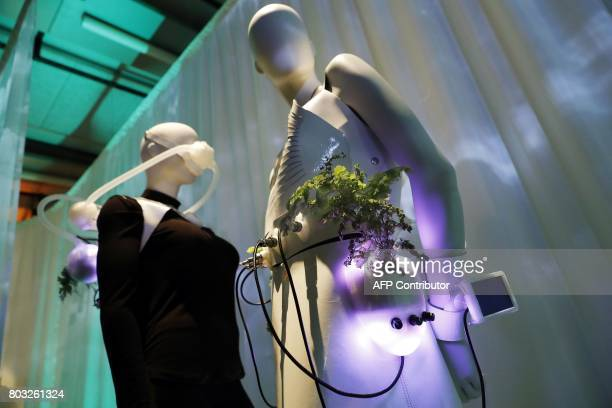 A picture taken on June 29 2017 shows fashion creations by Maria Castellanos and Alberto Valverde untitled 'guided by the Nature' displayed during...